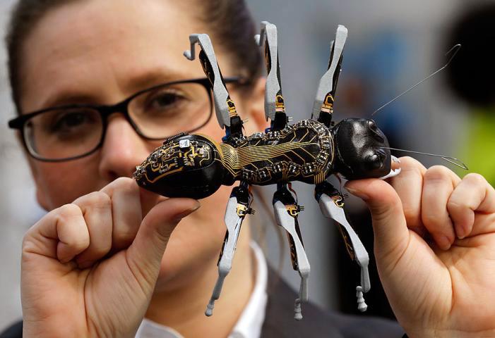 ربات های مورچه-دیجی اسپارک