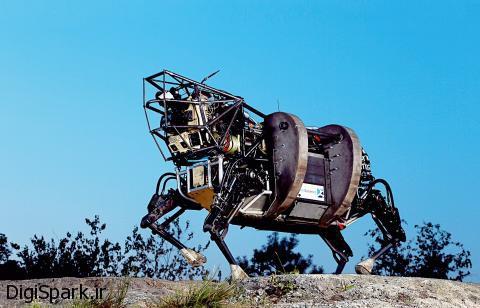 سگ های هوشمند و انسان - دیجی اسپارک