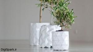 گلدان هایی که همزمان با گیاه رشد می کنند