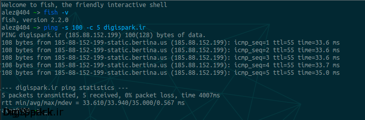 ping-packet-size