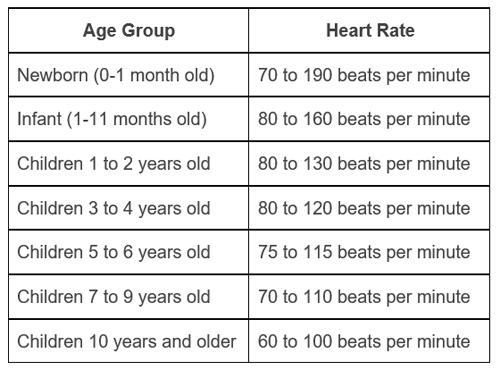 میزان ضربان قلب و سطح اکسیژن خون در حالت طبیعی - دیجی اسپارک