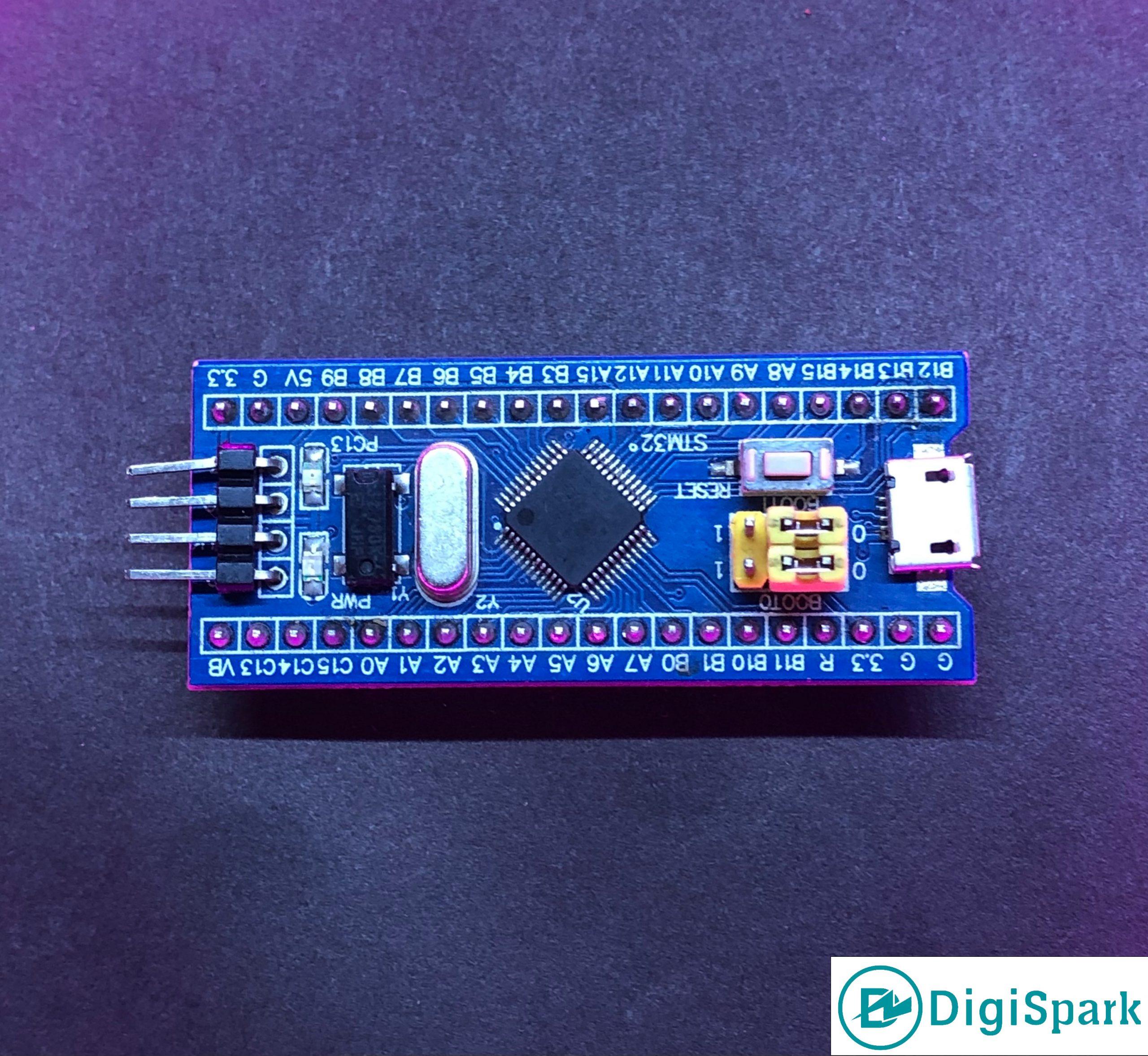 تبدیل حافظه Flash به EEPROM در برد STM32 - دیجی اسپارک