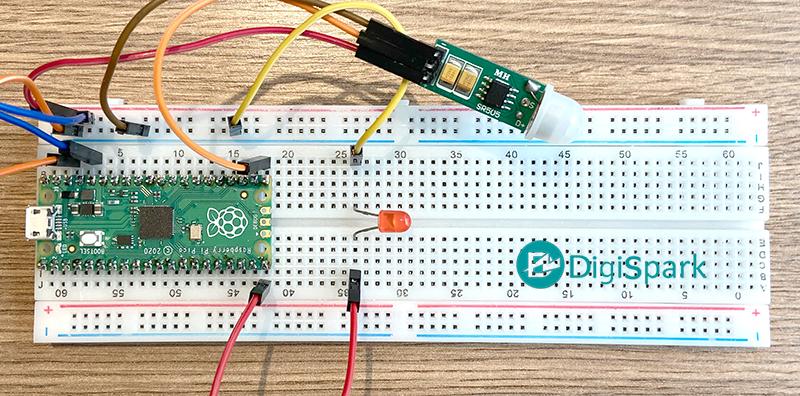 راه اندازی سنسور تشخیص حرکت PIR به برد رزبری پای پیکو Pico - دیجی اسپارک