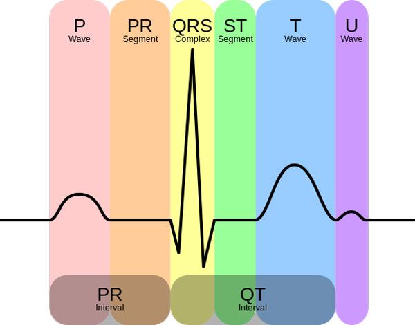 نحوه خواندن سیگنال ECG ماژول ضربان قلب - دیجی اسپارک